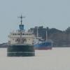 船が追走しながら入港!