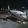 まだ乗る機会はある!B737-500スーパードルフィン NH429便搭乗記