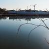 焼山池(愛知県豊明)