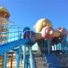 千葉の蓮沼海浜公園とドギーズアイランドをおすすめしたい。
