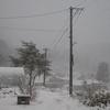 勤労感謝の日が今年の初雪デーとなりました(yahoo編集版)