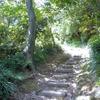 浪子不動ハイキングコースを登る