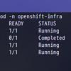 OpenShift Origin (OKD) 3.11 でHawkular Metricsがデプロイできました