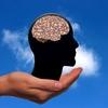 【脳 活性化】手を動かして脳を活性化する6つの効果