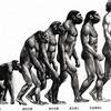 なんでキリンの進化系はいないのかについて、10歳の息子と真剣に議論してみた結果
