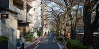 朝さんぽ。目黒川から渋谷まで。