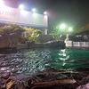 【千葉】鴨川シーワールド、夜の水族館探検に行ってきた!