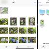 Mac の画像データを iCloud 経由で iPad に渡す