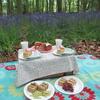 ブルーベルの森でピクニック