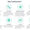 【ICO】ThinkCoinを紹介! あらゆる金融資産のP2P取引を目指す取引所