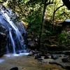 京都の定番観光スポットと隠れスポットを紹介!