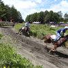 草競馬大好き! 馬と私と青い空