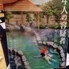 【ボードゲーム】温泉といえば湯けむり殺人事件『4人の容疑者』