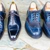 【めっちゃ楽しい!】くすみさんと大自然青空靴磨きをしてみた
