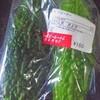 島野菜#03 ゴーヤー(ニガウリ),モロヘイヤ