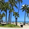 久しぶりのハワイ。久しぶりの更新。