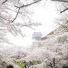 岡山・美作地方 桜の旅(その1)