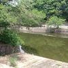 花園池→立岡池の繰り返し