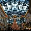 ディズニーランド『クリスマス・ファンタジー』に行ってきまして、