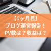 【はてなブログ運営報告】大学生の雑記ブログ1ヶ月目のPV数・収益のリアルを公開!