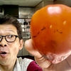 干さないと食べれない渋柿も、しっかり熟せば美味しい甘い柿になるんだね。