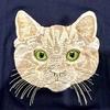 【限定】あの猫の刺繍Tシャツを販売します!