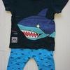 サメ出没注意!!