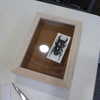オススメ!:NPO アンリ・ファーブル会主催「初級標本教室」 ※昆虫の標本作製の基礎を身に付けることができます