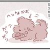 【犬漫画】牛のヒヅメをあげてみました。