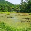 御池(長野県松本)