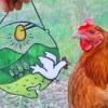 奇跡のニワトリさんたちが産んだ「隠岐島のたまご」を食べてみた!!