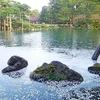 春の兼六園 桜が舞い咲く美しき金沢の庭園風景