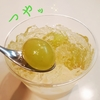 《成城石井》  杏仁豆腐ぶどうカロリーは?🍇ぷるんぷるんっ!『緑葡萄の杏仁豆腐』