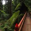 【栃木】赤雪山~仙人ヶ岳 神秘の巨石と伝説を訪ねて