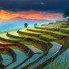 ベトナムで日本語教育が始まったことで日本人にどういった影響があるか