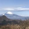 箱根外輪山トレラン一人前コース35K左回り