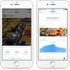 Instagram、日本でも「投稿の宣伝」「ビジネスプロフィール」「Instagramインサイト」を提供