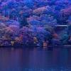 赤城 落ち葉を踏みしめ歩く黒檜山から駒ケ岳