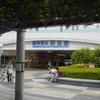 【大阪市・福島区】2016年も阪神野田駅の『のだふじ』が綺麗だったぜ!海老江西小学校のパンジーには癒された!