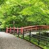 【群馬】伊香保温泉旅行記〔8〕伊香保温泉湯元にある美しい河鹿橋と伊香保神社