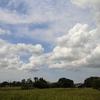 6月22日の積雲&今日の独り言