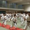 東京都高体連 強化練習会(演武講習会)の様子をご紹介します!