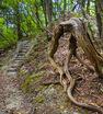 ちょっとズルして即リベンジ!『鳳来寺山・山頂周遊ぐるりと一周コース』