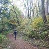中能登トレジャートレイル、10kmの部は実は14kmだし、北陸の虎と初めまして。