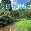 今日のよかった第29回〜今日も川遊び〜