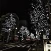 12月、イルミネーションを見ながら夜の松本散歩❤︎
