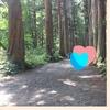 【軽井沢だけじゃない】長野県おすすめ避暑地【おすすめ立ち寄りスポットも】