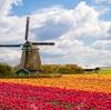 メルヘン?お洒落?アナーキー?オランダのアムステルダムに来ました。
