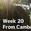 【20週目】素朴な笑顔に癒やされる!カンボジア・アンコールワット遺跡を訪れて