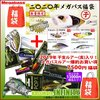 【メガバス】メーカー2020年福袋とショップ福袋がセットになった「爆釣お買い得福袋セット 」発売!